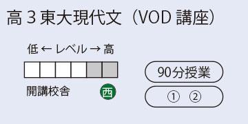 高3東大現代文(VOD講座)